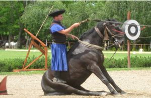 The Hungarian Equestrian show
